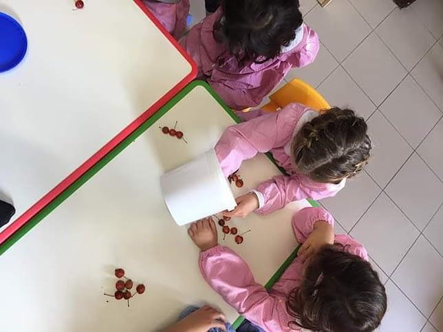 Scuola dellinfanzia Damiani 0023